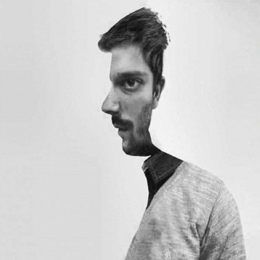 face_illusion